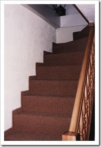 Treppe mit Teppichboden